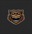 bear logo design template bear head icon vector image