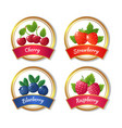 berry jam and marmalade labels fresh summer vector image vector image