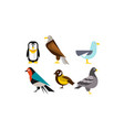 birds set penguin eagle gull pigeon vector image vector image