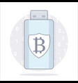 bitcoin wallet usb storage cartoon style vector image vector image