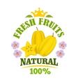 Carambola fruit isolated emblem with starfruit vector image vector image