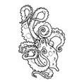 cartoon octopus characters vector image vector image