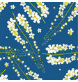 cassia fistula - golden shower flower on indigo vector image vector image