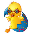 cute easter duckling in a broken eggshell vector image vector image