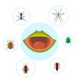 frog food and nutrition crocket moscito fly vector image