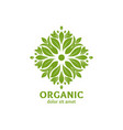 green logo design with leaves vector image vector image