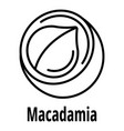 macadamia icon outline style vector image