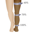medical compression hosiery vector image vector image