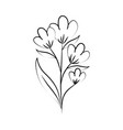 minimalist tattoo flower line art herb and leaves vector image vector image