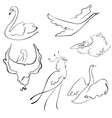 birds sketches vector image