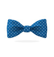 blue bow tie with print a polka dots vector image