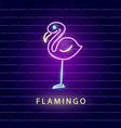 flamingo neon bright sign vector image