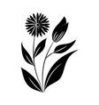 minimalist tattoo organic flowers leaves vector image vector image