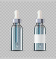 mockup cosmetic bottles with a dropper or pipette vector image vector image