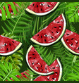 seamless pattern with watermelons and plants vector image