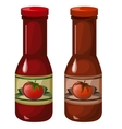 Two closed bottles of ketchup on white background vector image