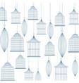 birdcage background design vector image