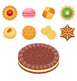 different cookie cakes top view sweet food tasty vector image vector image