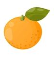 Orange isolated vector image vector image