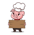pig chef holds a sign vector image