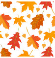 seamless pattern with colorful oak autumn vector image