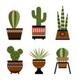 six cactuses in pots with ornament vector image