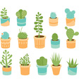 Succulents vector image vector image