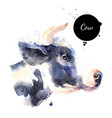 watercolor hand drawn cow profile head painted vector image