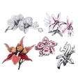 Floral Set with Watercolor Flowers for Summer or vector image
