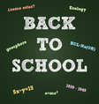 Back to school typography on a green board vector image vector image