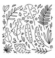 big floral set black hand drawn palm leaves vector image