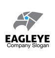 Eagle Eye Design vector image