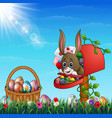 easter bunny out from of the mailbox with easter b vector image vector image