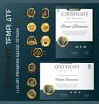 professional certificate template with luxury and vector image