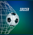soccer game match goal moment with ball in the vector image vector image