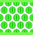 watermelon fruit pattern vector image