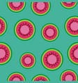 watermelon seamless pattern on the light green vector image