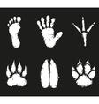 Human foot print and animal footprint vector image
