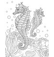 adult coloring bookpage a cute seahorse image vector image vector image
