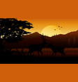 animals silhouette at sutset vector image vector image