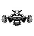 black and white of a bull with barbel vector image vector image