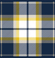 blue and yellow tartan plaid seamless pattern vector image vector image