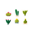 cactuses set bright flowering desert plants vector image vector image
