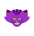 cheshire cat smile isolated fantastic pet alice vector image vector image