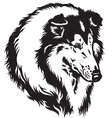 collie head black white vector image vector image