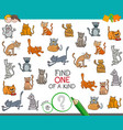 find one of a kind with cats animal characters vector image vector image