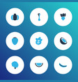 fruit icons colored set with watermelon vector image