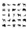 wildlife solid icons set vector image
