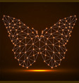 abstract neon butterfly of lines and dots vector image