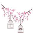 bird love cage vector image vector image